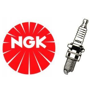 Zapalovací svíčka NGK DR8ES